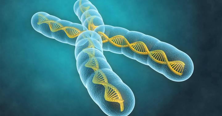 生まれつき免疫が弱い「XLA」の男の子に多い病気とはの写真