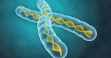 生まれつき免疫が弱い「XLA」の男の子に多い病気とはの写真 (C) Sashkin - Fotolia.com