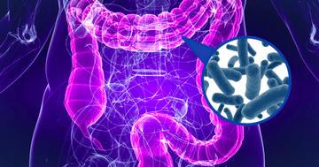 下痢・血便が出る難病「潰瘍性大腸炎」に糞便移植は効く?の写真 (C) Sebastian Kaulitzki / Jezper - Fotolia.com